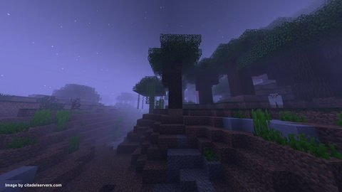 night-time-in-minecraft-world