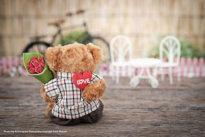 rose-bear-plush-toy
