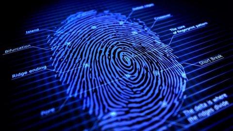 How long do Fingerprints last?