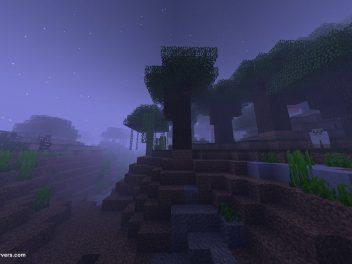 night time in-minecraft-world